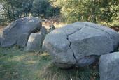 Halsskov Vænge kløve sten