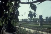 Strandpark 6