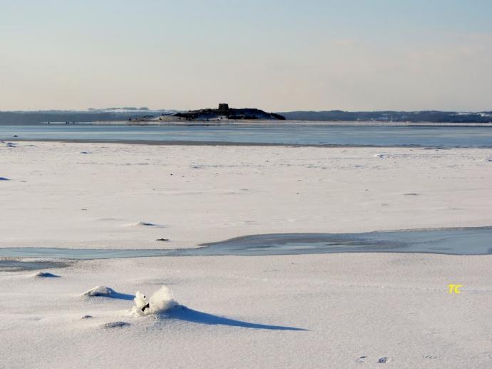 Kalø i sne