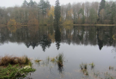 Hund sø