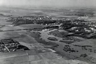 Ribe i 1966