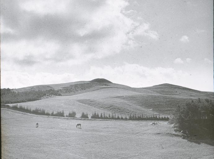 Agri Baunehøj