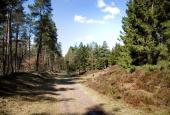 Adelsvejen ved galgebakken(Rethøw)