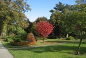 Assistens Kirkegård-2