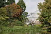 Dammen i Botanisk Have