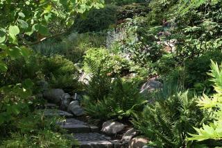 Stenhøj i Botanisk Have
