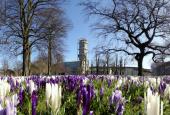 Rådhusparken i forårsdress