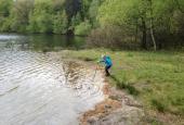 Leg ved søen