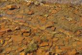 vand med jern i