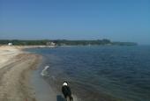 Hæsnes havn set fra stranden