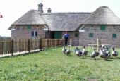 Gåsemandens gård