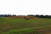 Gravhøj ved hærvejen syd for Stokkjeldsdal