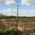 Holmegaard Bog