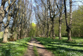 WIEDEVELTS MINDEPARK
