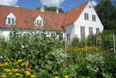 Malergården have