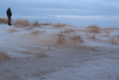 grenen dunes  in january