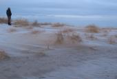grenen dunes  in january