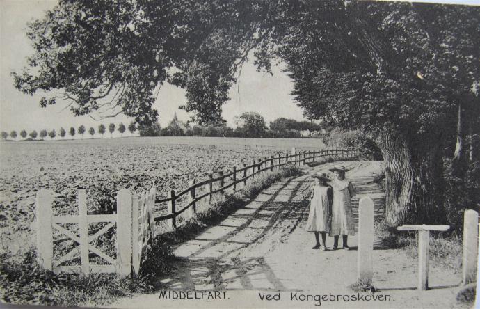 Hindsgavls led ved Kongebroskoven. I baggrunden ser man alléen fra Middelfart og Adlerhus.