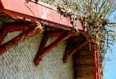 HOVEDHUS: Træværk og paryk på hus!