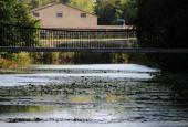 Set modsat søen