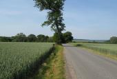 Tybrindvej med Wedellsborg Hoved i baggrunden.
