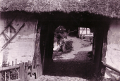 Kaleko Vandmølle - set gennem porten 1906