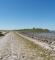 Vejdæmning til Kalø Slotsruin