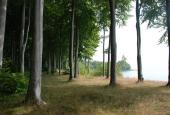 Klinten ved Ørnehøj
