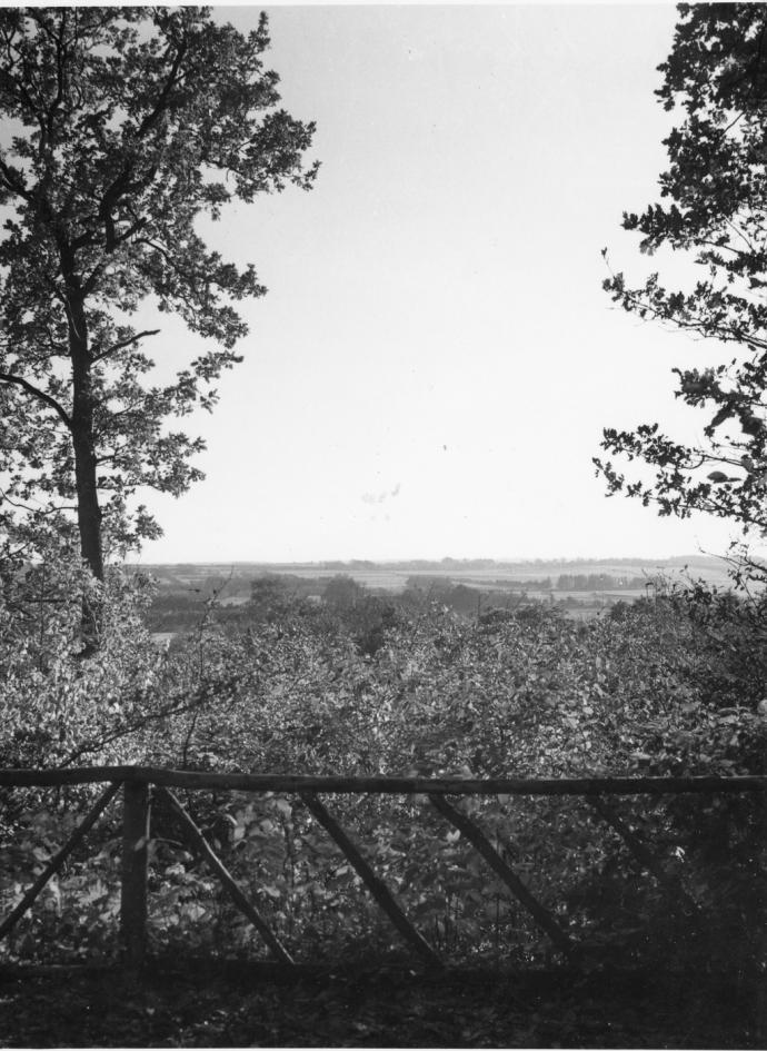 Kongeå-dalen, set fra Skibelund Krat
