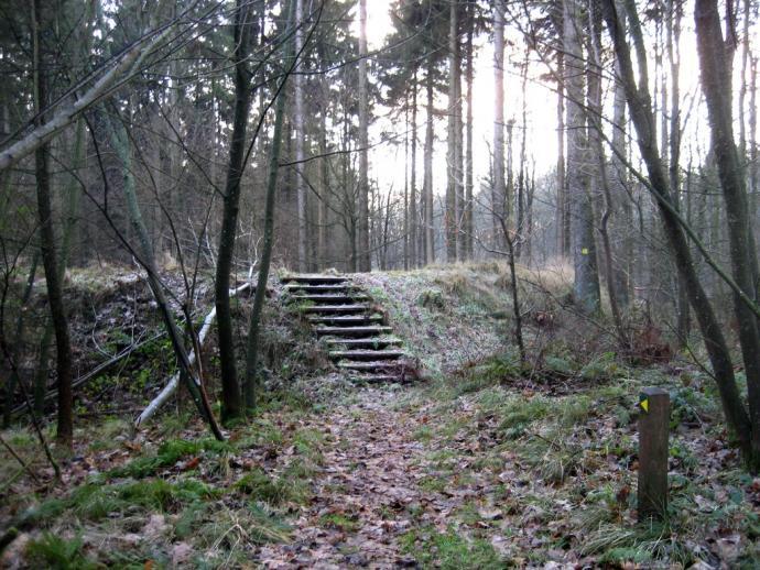 Troldborg Ring-2