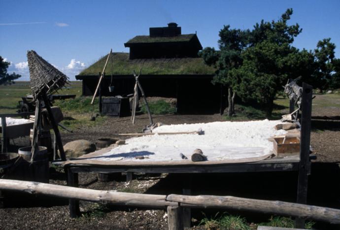 Sydehytte på Læsø
