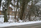 HAVEHUS: Hus gennem træer