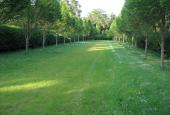 Mariebjerg Kirkegård allé