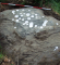Sten med skåltegn, Næsbyholm Storskov