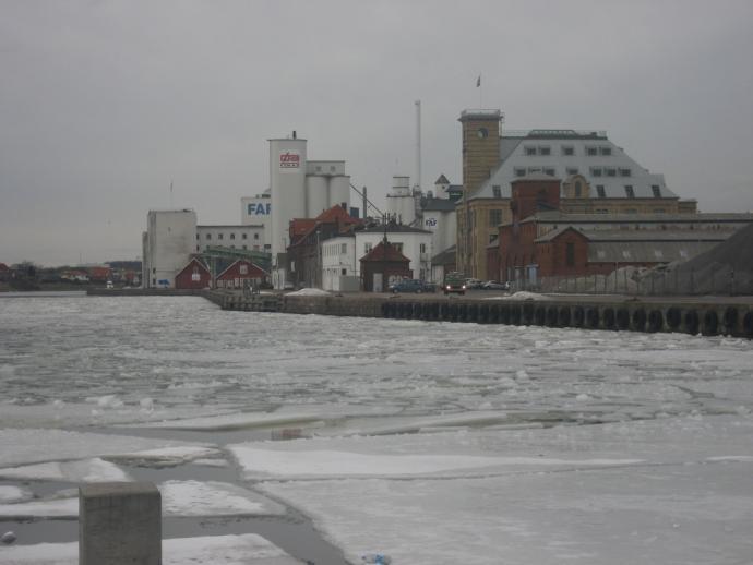 Odense Havn, bebyggelse