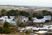 Tibirke Bakker