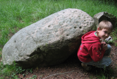Næsbyholm Storskov, dysseoverligger med skålsten-1