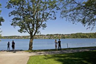 Borgvold, Viborg