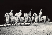 Lipizzaner horses, Cirkus Schumann