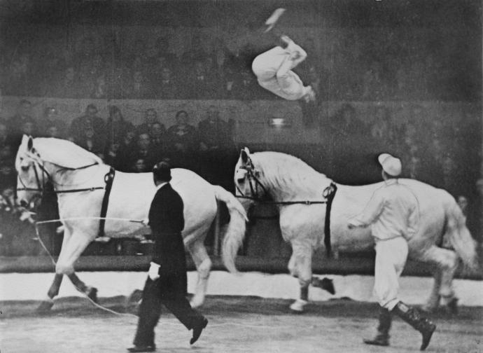 Akrobatik på hesteryg