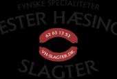 Vester Hæsinge Slagteri