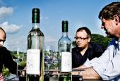 Vester Hæsinge Vinproduktion