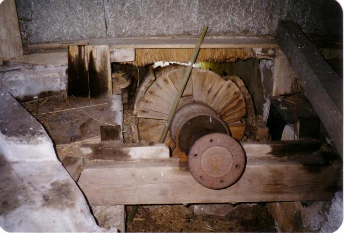 Pumpesnegl in situ